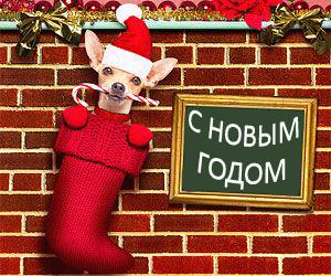 что дарить в год собаки