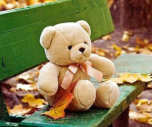 история медведей тедди